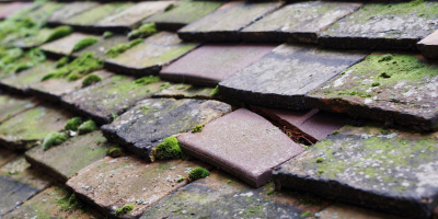 Kemerton roof repair costs